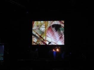 Live in Trento - Elve 21.09.14